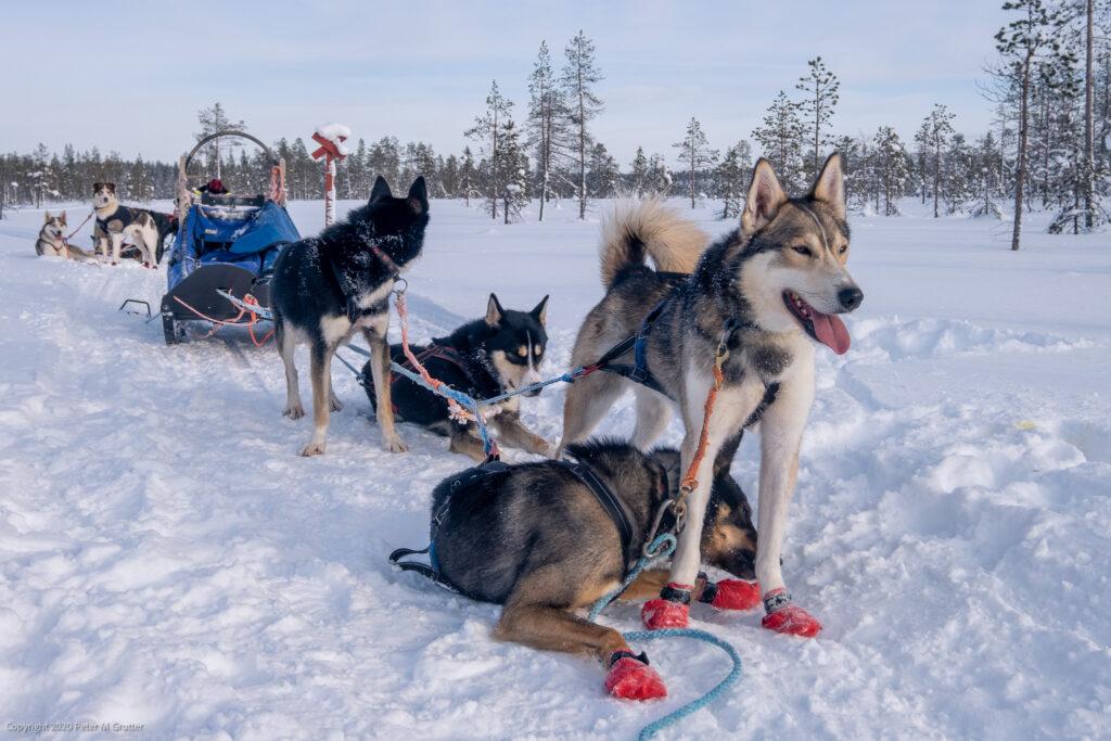 Finland-7.jpg